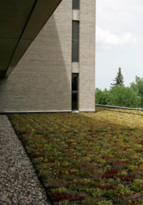 Photo courtesy of uwsp.edu UWSP protects water quality through storm water management practices, such as the green spaces on the roof of the library.