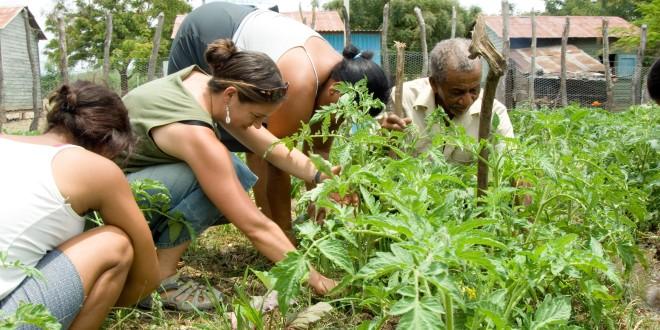 Peace Corps Seeks Volunteers