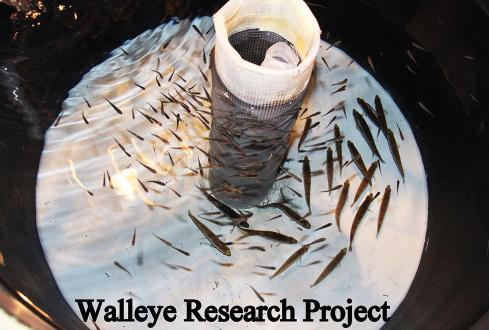 Aquaculture Demonstration Facility Exhibits Sustainable Fish Farming