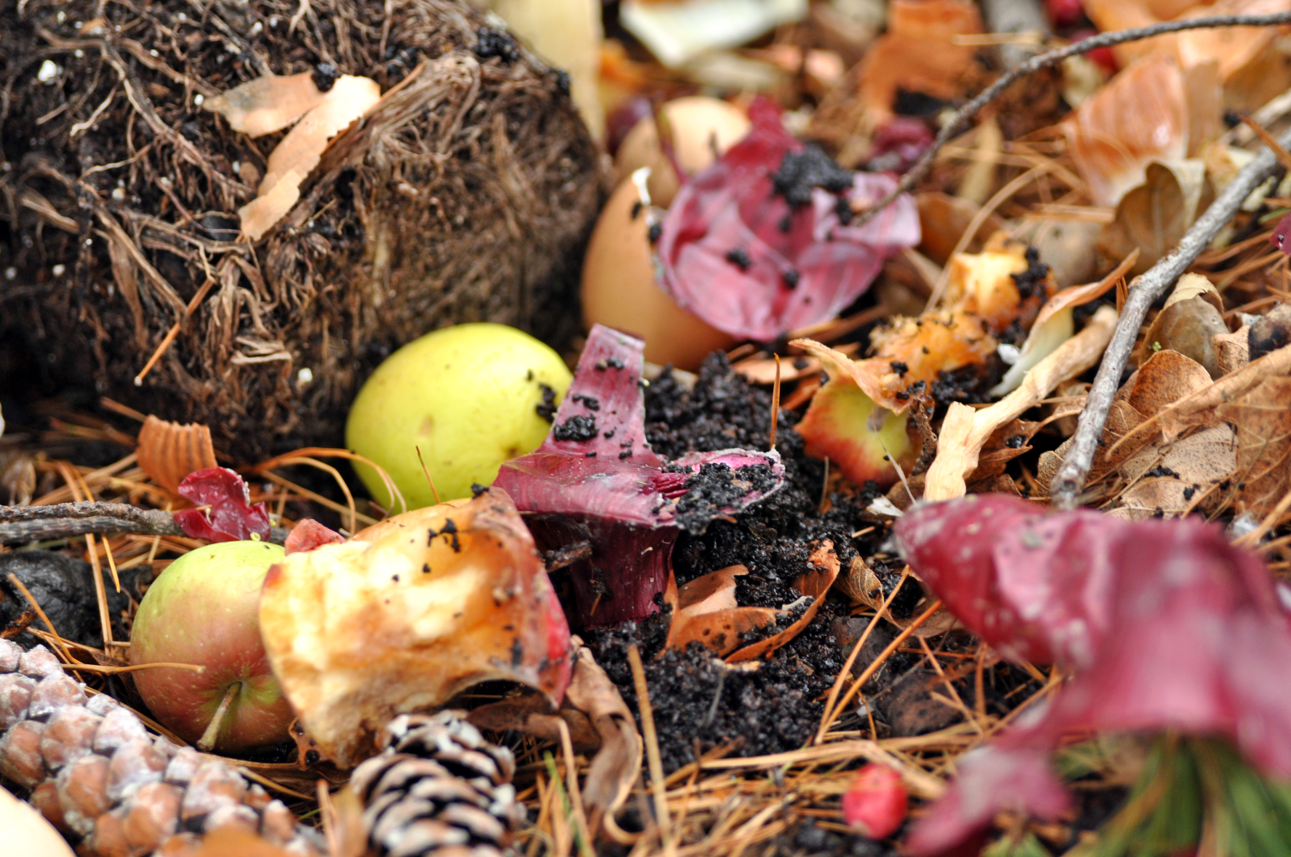 Campus Compost is More Than What Meets The Nose