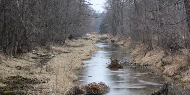 Local Farmer in Legal Battle Over Stream Reclamation Efforts