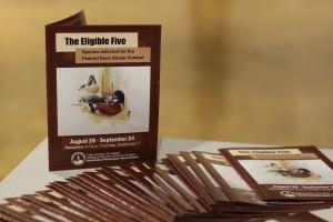 The Eligible Five exhibit runs through September 24. Photo by Dalen Dahl.