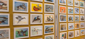 A New Duck Stamp Takes Flight