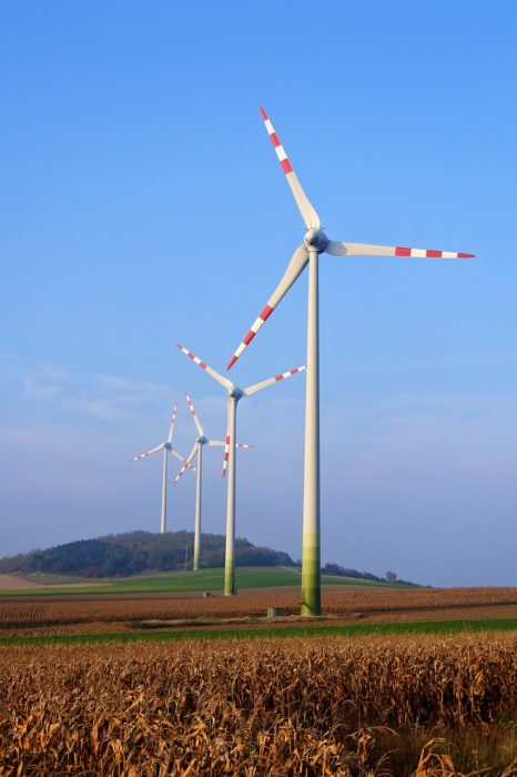 Job Growth From Renewable Energy Sparks Conservative Support